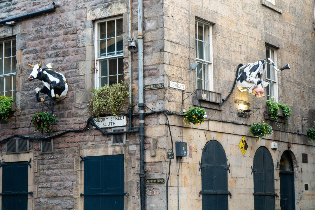 Building with cows on side of building in Edinburgh