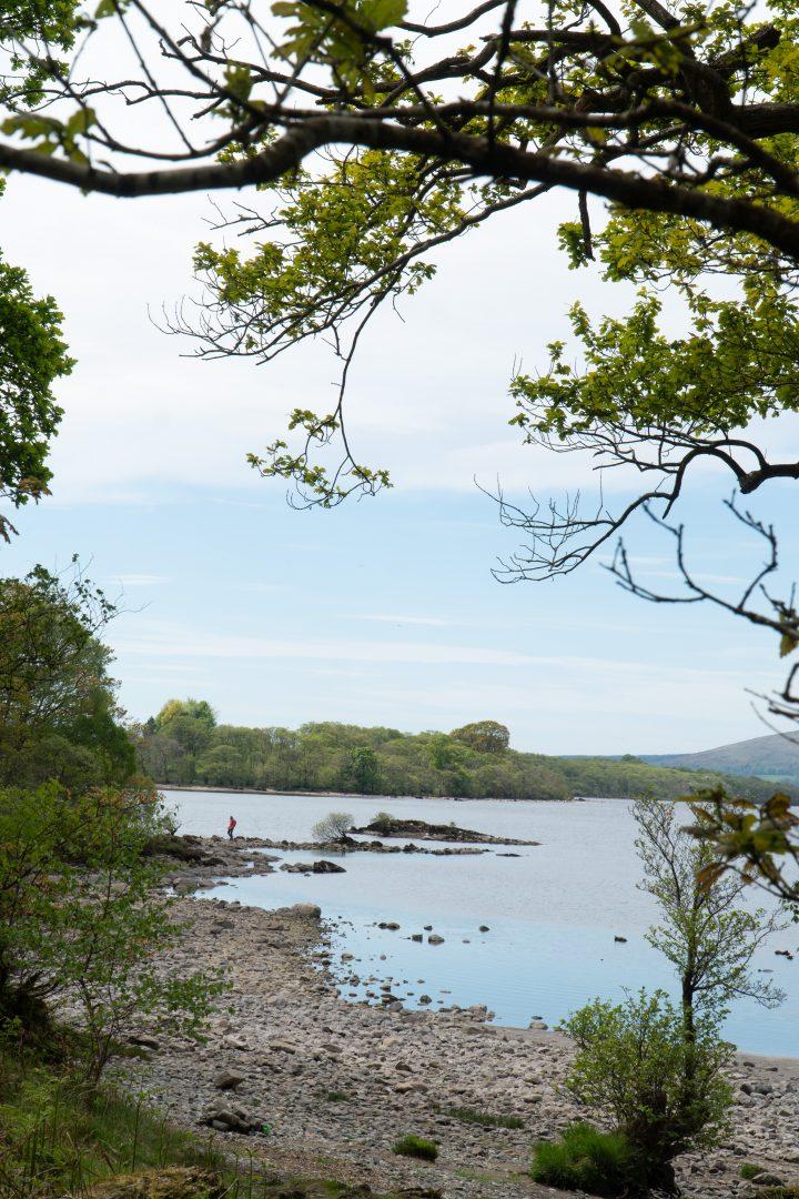 Shore of Loch Lomond