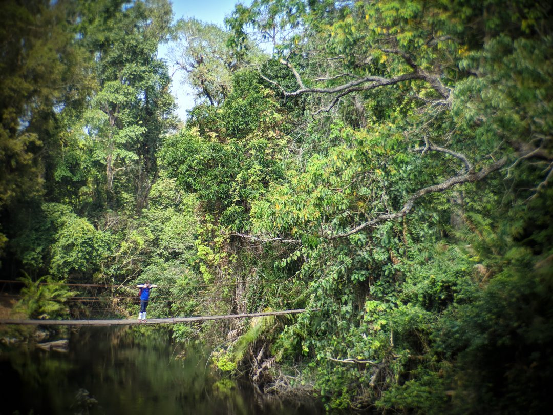 Man on Jungle in Thailand