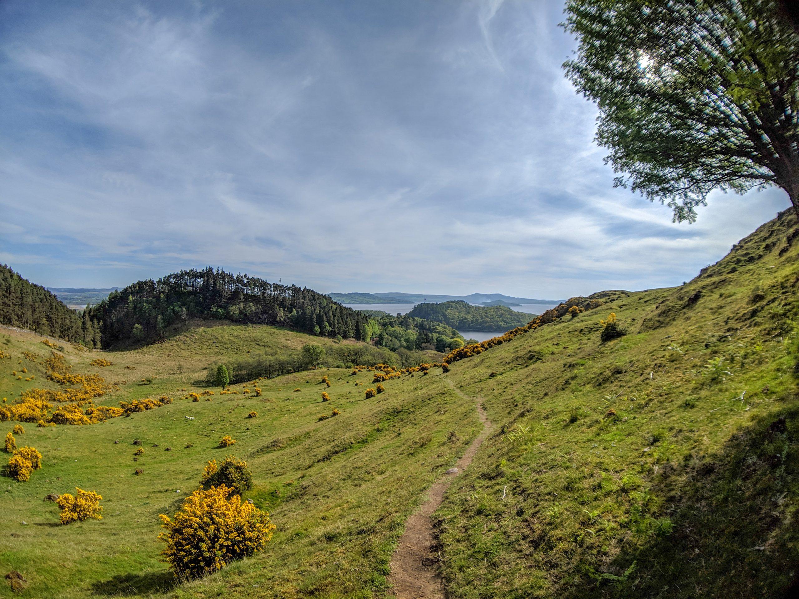 View of Loch Lomond