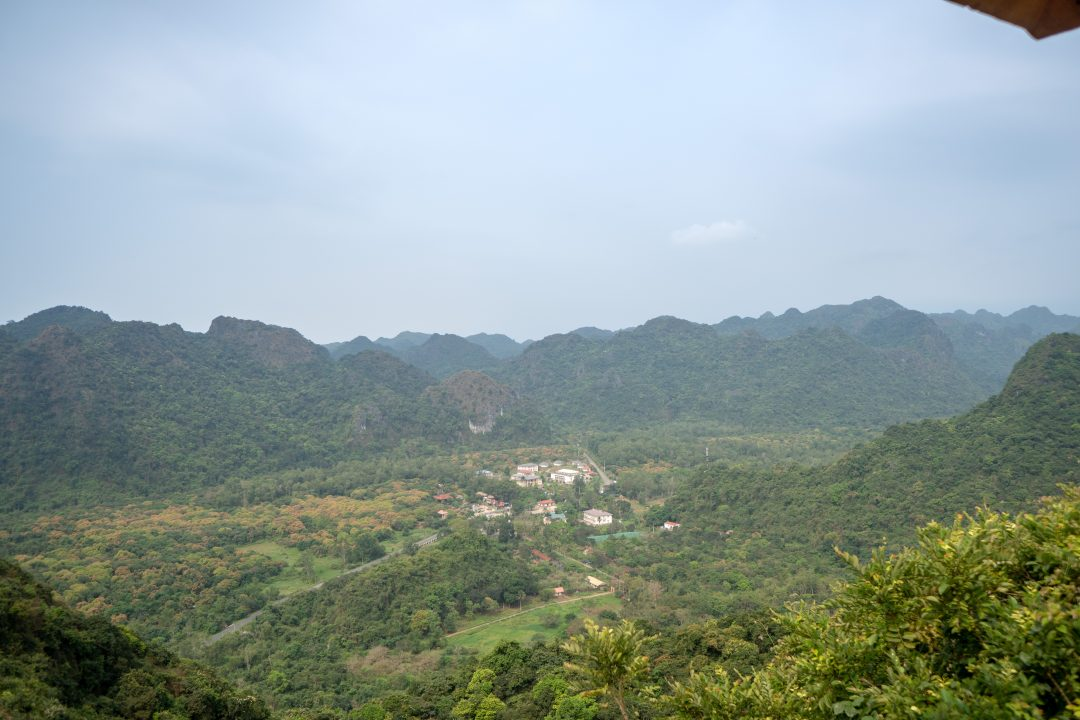 Viewpoint of Cat Ba Island