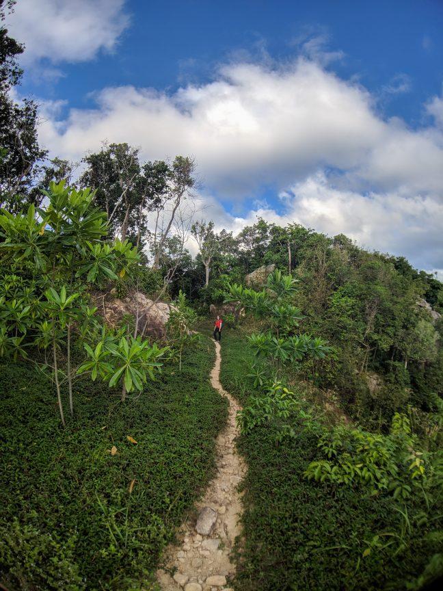 Woman hiking in Koh Tao jungle.