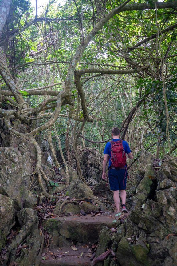 Man Hiking on Cat Ba Island