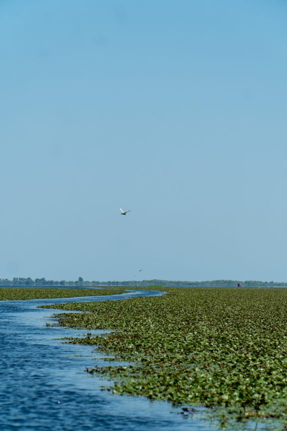 Danube Delta Black Sea Waterway