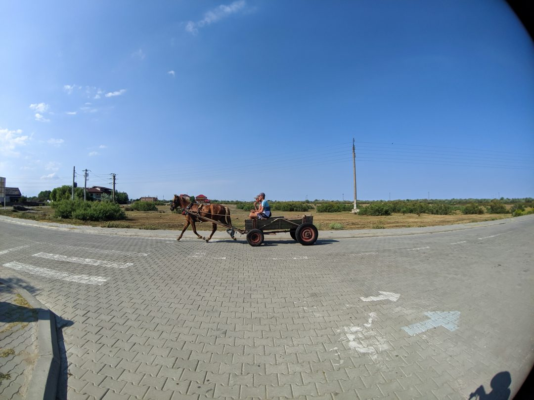 Horse and Buggy in Sulina Romania