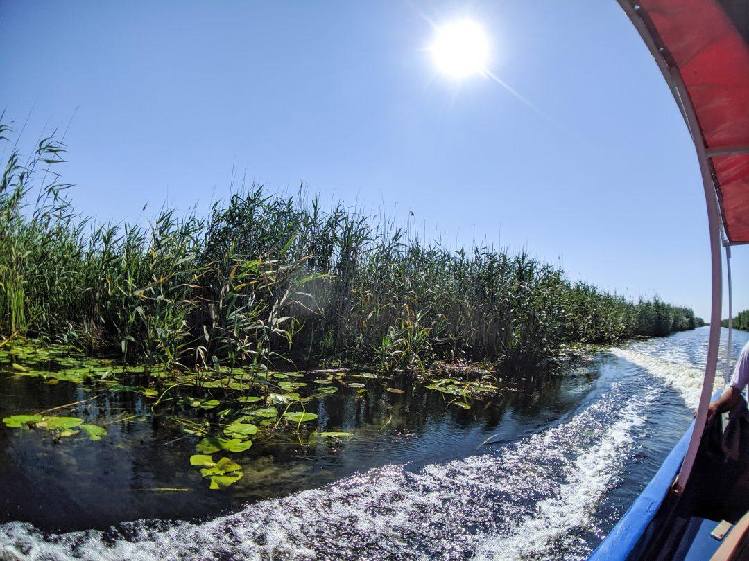 River boat tour Danube Delta