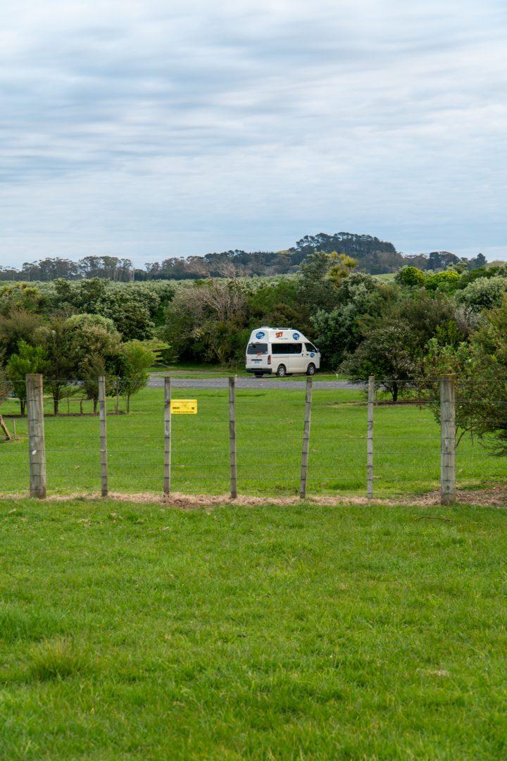 Campervan in Auckland DOC Campsite