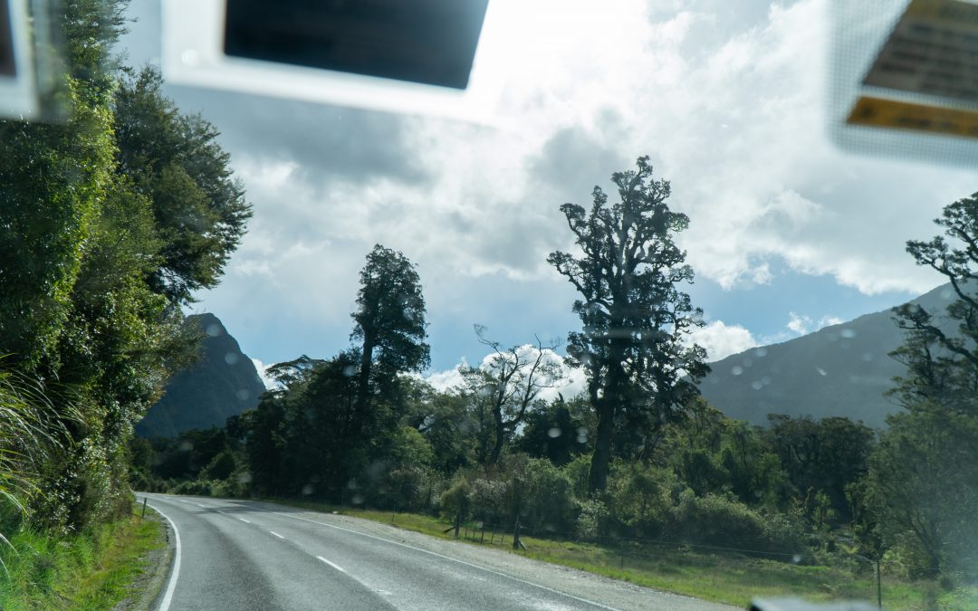 10 Budget-Saving Tips for a New Zealand Road Trip