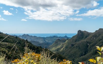 Experience the Coromandel Peninsula's Pinnacles Walk