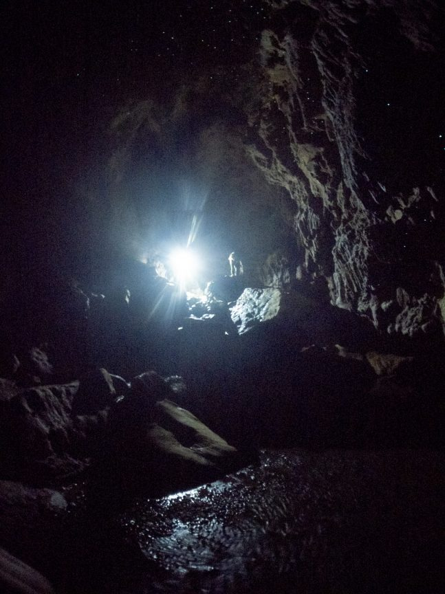 Looking for Glow Worms at Waipu Caves