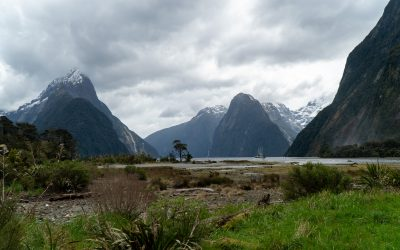 Milford Sound Day Trip: What to Expect and is it Worth it?