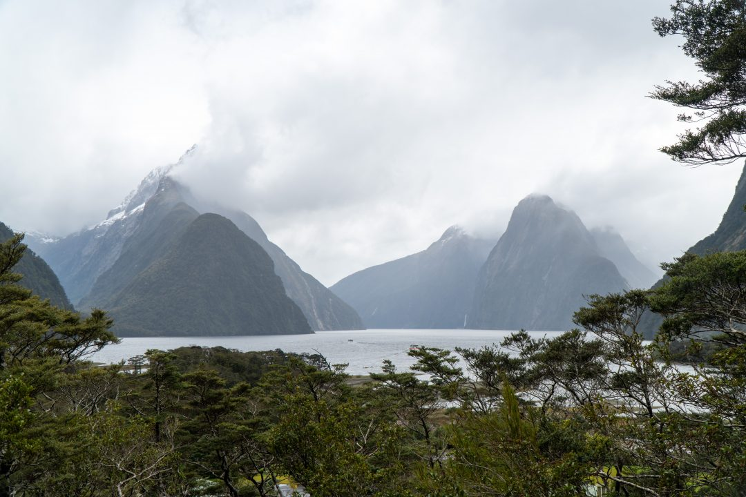 Milford Sound Lookout