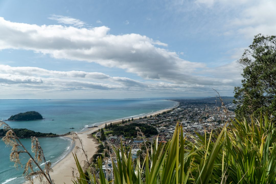 Bay of Plenty from top of Mount Maunganui, New Zealand.