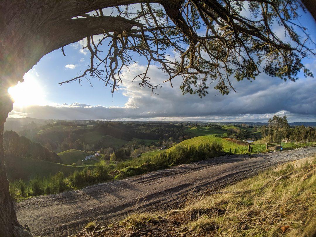 Morning view over rotorua