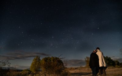 Epic Stargazing at New Zealand's Dark Sky Reserve