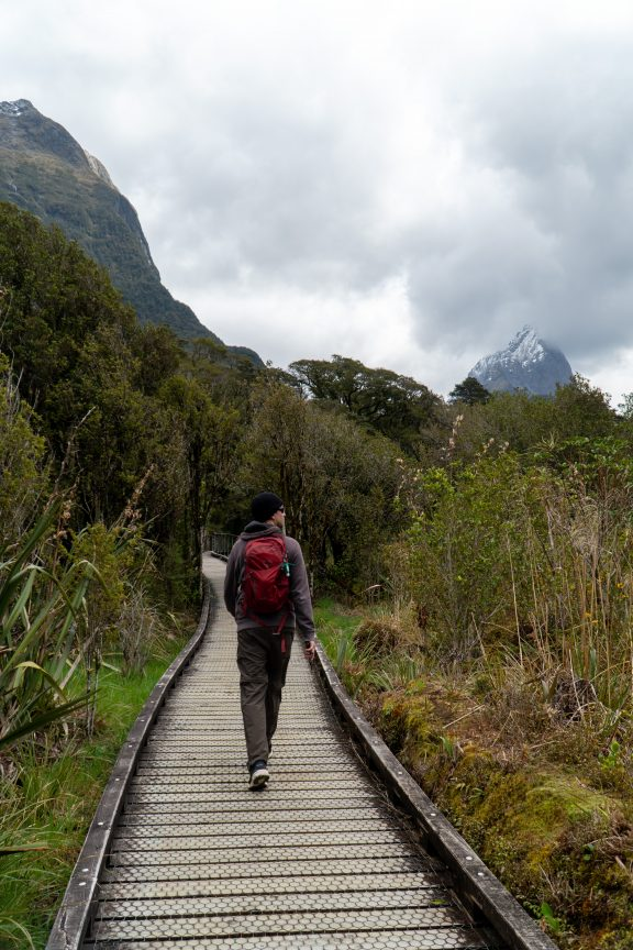 Man hiking Lakeshore of Milford Sound