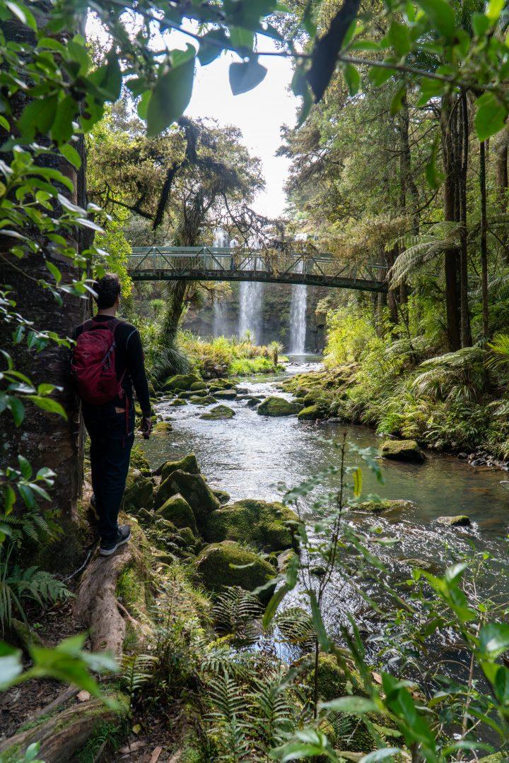 River path near Whangarei Falls