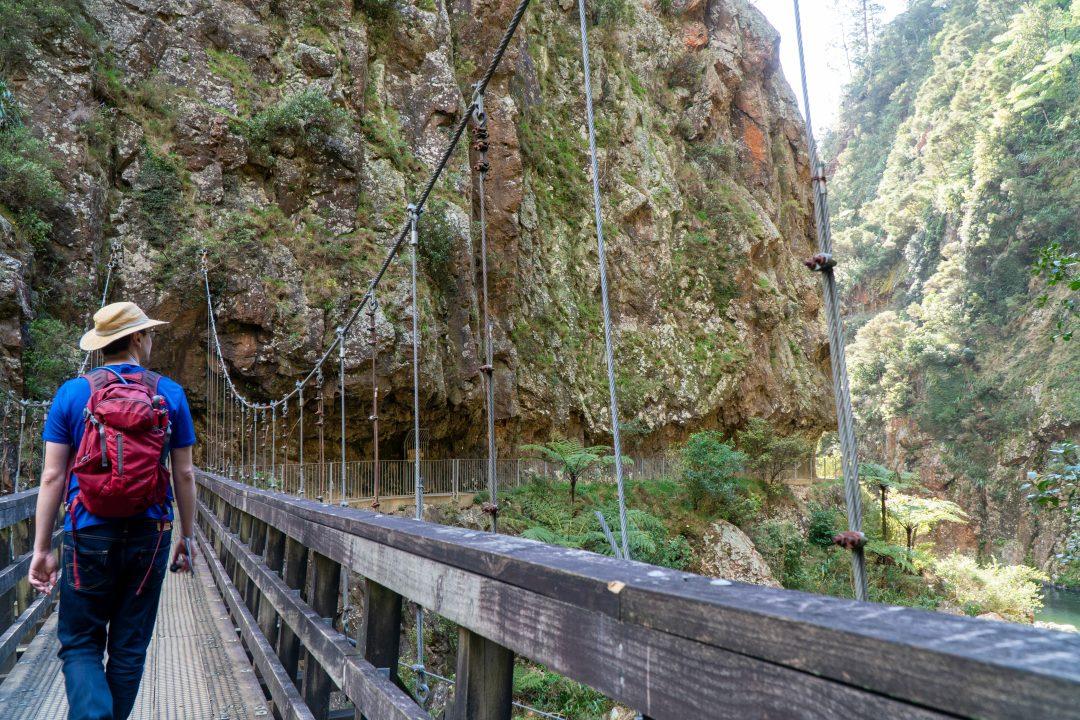 Man walking along suspension bridge. New Zealand