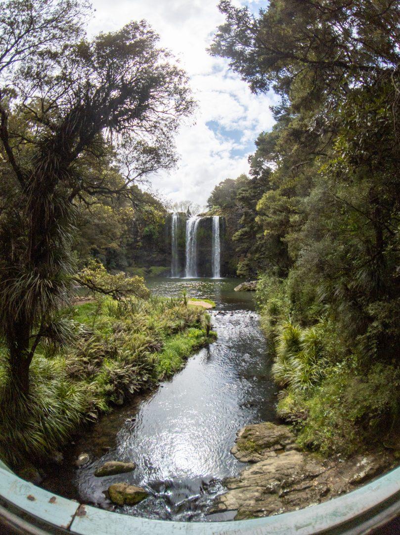Whangarei Falls from bridge