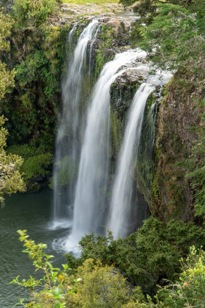 View of Whangarei Falls from above